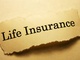 What Are Modified Endowments for Low Cost Life Insurance