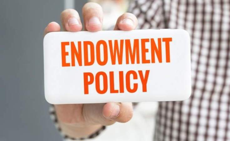 What Are Traditional Endowments For Low Cost Life Insurance?